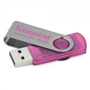 Kingston DataTraveler 101 8GB